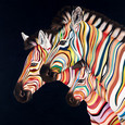 Flying Colours by Hayley Goodhead